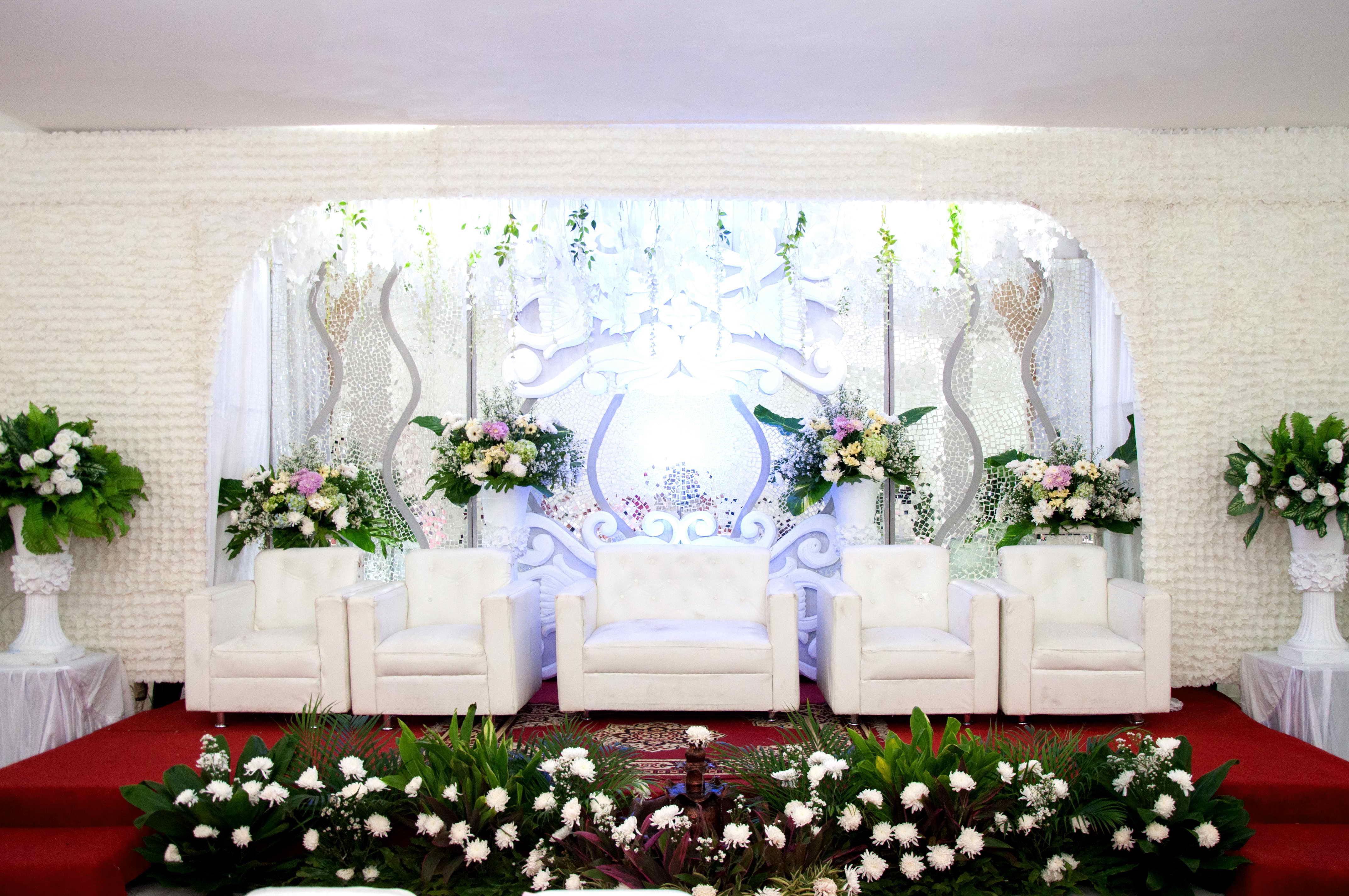 Dekorasi Pernikahan House Of Eva Hotel House Of Eva